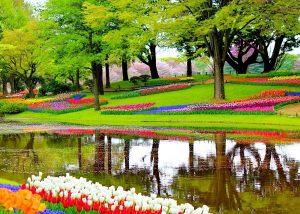 luna de miere, aprilie - keukenhof - overseas travel